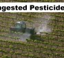 01:34 Short Video: Ingested Pesticide Levels in Urine Before and After an Organic Diet
