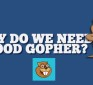 Now open for public test drive: GoodGopher.com search engine filters out media propaganda and government disinfo