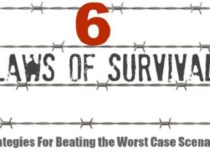 6 Laws of Survival