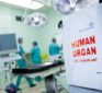 Does the Government Own Your Organs? What You Don't Know Can Kill You | Dr Paul A Byrne MD