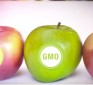 Huge Victory: USDA Introduces Official Non-GMO Label