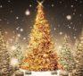 How December 25 Became Christmas