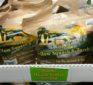 Costco Deals: Organic Squash and Zucchini – Eggs – Coconut Oil – Medjool Dates – Chicken