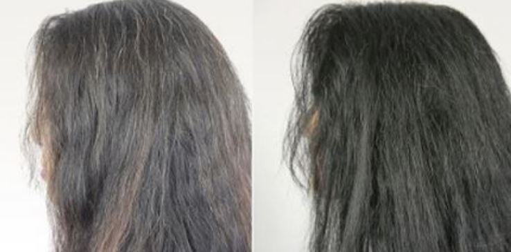 Blackstrap Molasses to Reverse and Cure Gray Hair | The Ezekiel Diet Files
